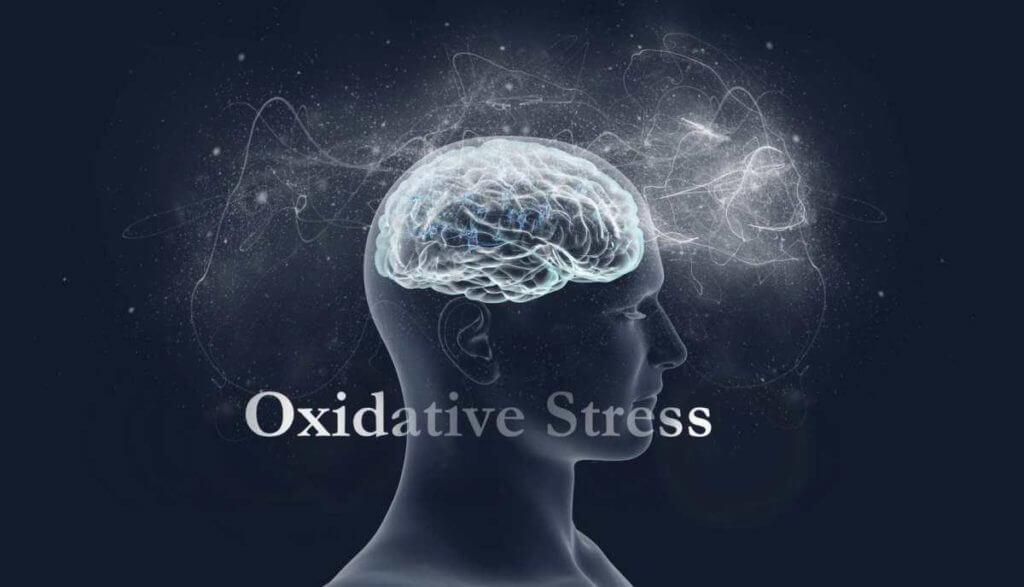 Managing Oxidative Stress