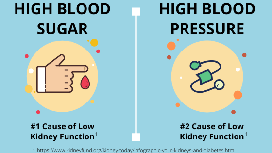 Causes-of-low-kidney-function